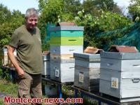 Confronté à la disparition des abeilles