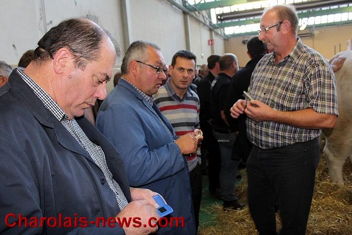 concours agricole du val d u2019arroux  u00e0 gueugnon