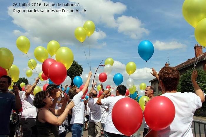 allia-29-09-165